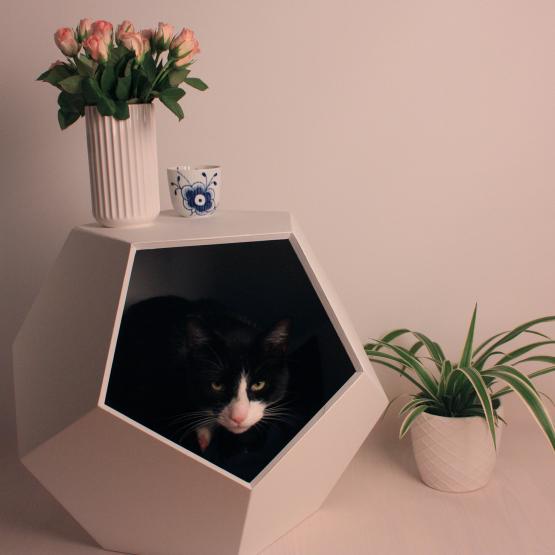 kat i hunde- & kattehus
